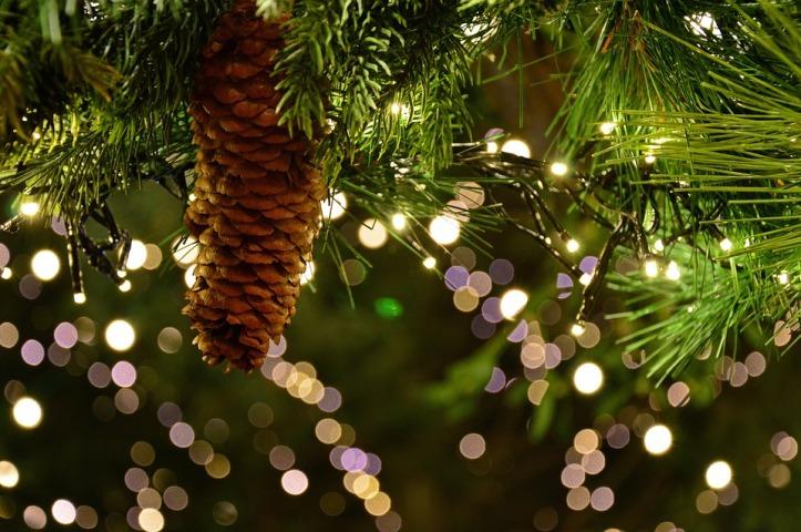 christmas-garland-3891232_960_720